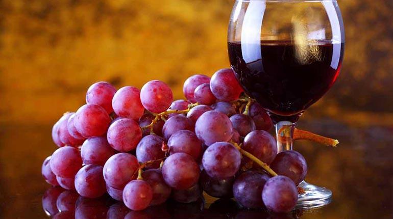 Micro - Roberto Borsato - Antioxidantes naturales: Resveratrol